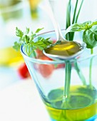 Glass of olive oil with fresh herbs