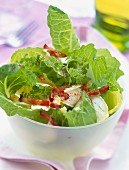 Salad with flakes of goat cheese and diced bacon