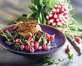 Spiced pigeon with radishes