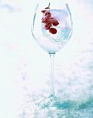 Geeiste Johannisbeeren im Glas
