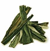 Kombu Algen