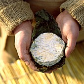 Child holding a round goat's cheese