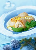 Scallops with citrus- fruit