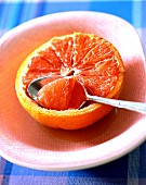 grapefruit roasted with rum