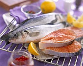 Raw bass and salmon steaks