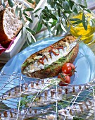 Grilled sardines marinated in olive oil