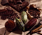 Cacao beans and shell