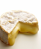 Runny Camembert