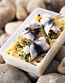 Sardines stuffed with spicy couscous