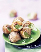 Snails with parsley and garlic