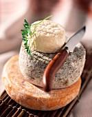 Stacked cheeses : Reblochon, Selles-sur-Cher, Crottin de chavignol