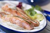 Lemon salmon fillets