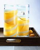 Zitrusfrucht-Cocktail