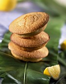 Lemon sponge biscuit cakes