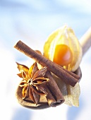 Physalis, cinnamon sticks and star anise on spoon