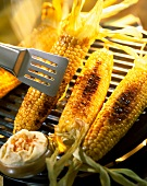 Maiskolben auf dem Grill mit Gewürzbutter