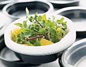 Watercress, orange and onion salad