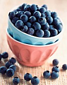 Bowl of bleuberries