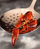 Crawfish on skillet