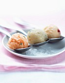 Melon, apple and nectarine sorbet on spoons