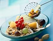 Müslimischung und frisches Obst