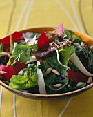 Beetroot, young sprouts and pine nut salad