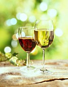 Glasses of red and white wine outdoors