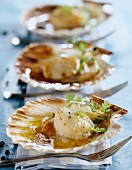 Scallops with salted butter