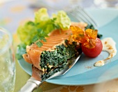 Half-cooked salmon with herbs