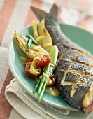 Grilled bass with fennel