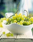 Frische grüne Trauben in weisser Schale