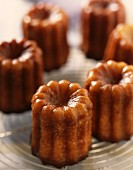 cannelé vanilla and rum caramelized cakes