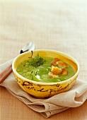 Provençal broad bean soup