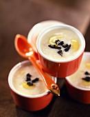 Paimpol coco bean creams with truffle