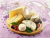 Käseplatte mit Cloche auf festlichem Tisch