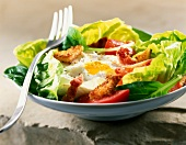 simple salad with lettuce, tomato and fried egg