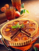 moist chocolate and apricot tart
