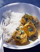 chicken korma and plain rice