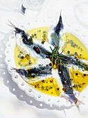 Raw marinated sardines