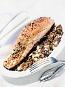 Salmon in spicy crust