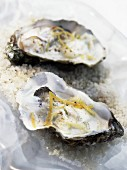 Hot oysters with tender leek fondue