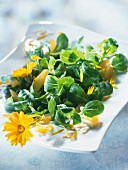 Lamb's lettuce and apricot salad