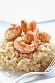 Risotto with Dublin Bay prawns
