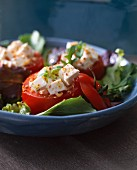 Tomatoes stuffed with Brocciu salad