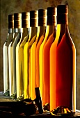 Mehrere Flaschen Calvados in verschiedenen Reifegraden