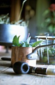 A copper pot with fresh sage and a tobacco pipe