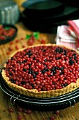 Alsatian berry tart with red and blue berries