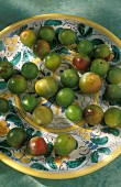Greengages on a Mediterranean ceramic plate
