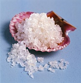 Sea salt in scallop shell