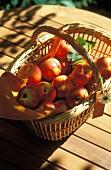 Basket of nectarines
